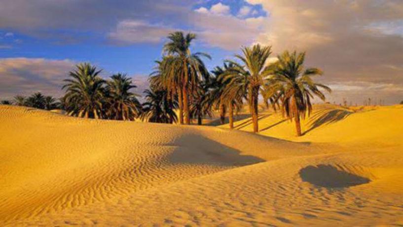 A photo of Sahara Restaurant